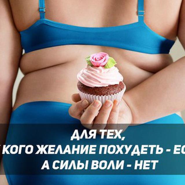 Кот Хочешь Похудеть. Кот плохо ест и худеет: причины, безопасные и опасные симптомы, первая помощь, лечение